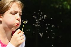 Free Girl Blowing Dandelion Royalty Free Stock Photography - 9804977