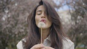 Girl is blowing the dandelion. Beautiful girl is blowing the dandelion in the park while taking a walk stock footage