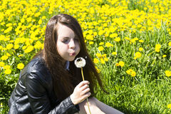 Girl blowing on dandelion on carpet of flowers Royalty Free Stock Image