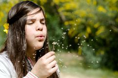 Girl blowing dandelion flower royalty free stock images