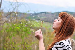 Girl blowing on dandelion outdoors Royalty Free Stock Photography