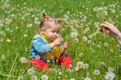 Girl blowing dandelion outdoors in spring park Royalty Free Stock Photos