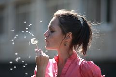 Girl blowing on a dandelion. Portrait of a girl blowing a dandelion royalty free stock photos