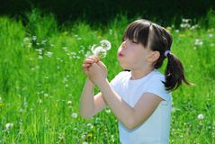 Girl Blowing Dandelion Seeds Stock Images