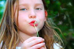 Girl Blowing Dandelion Seeds Royalty Free Stock Photo