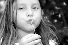 Girl Blowing Dandelion Seeds Stock Photos