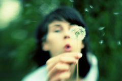 Girl blowing dandelion seeds away Royalty Free Stock Photography