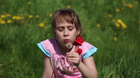 Girl blowing on a dandelion. Sitting in the flower meadow stock video