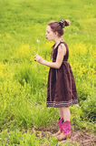 Girl blowing dandelion Spring meadow Stock Images