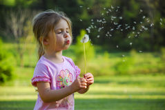 Girl Blowing Dandelion royalty free stock photography