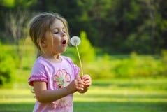 Girl Blowing Dandelion stock image