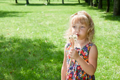 Girl blowing on dandelions Stock Photo