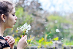 Girl blowing on many dandelions Royalty Free Stock Photography