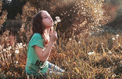 Girl blowing seeds from a flower dandelion in the autumn. Afternoonr Royalty Free Stock Images