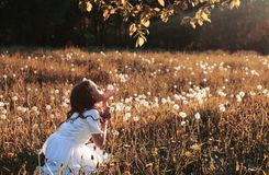 Girl blowing seeds from a flower dandelion in the autumn. Afternoonr Stock Photos