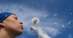 Girl blowing seeds out of a dandelion Stock Image