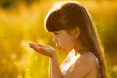 Girl blowing on seeds in the palms Stock Photography