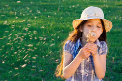 Girl blowing to dandelion Royalty Free Stock Photo