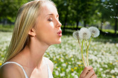 Girl blowing on white dandelion Stock Photography
