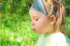 The girl  blows on a dandelion Stock Photography