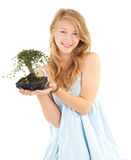 Girl in blue dress with bonsai tree Stock Photo