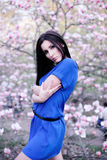 A girl in a blue dress in the garden of magnolias Royalty Free Stock Images