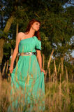 Girl in a blue dress in the spikelets. Girl in a blue dress on a background of wood Royalty Free Stock Photography