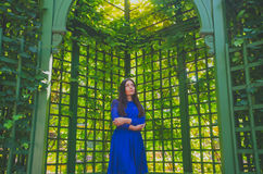 The girl in the blue dress stands under the arch green arch on a beautiful Sunny day. Beautiful girl in a dress stands under the arch live arch Royalty Free Stock Image