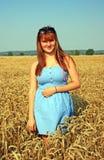 Girl in blue dress walking on wheat field Royalty Free Stock Photography