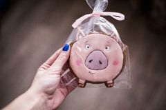 The girl with blue nails holds in hand a symbol of 2019 - a pig. pink gingerbread in the form of a mumps royalty free stock photos