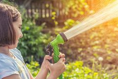Girl watering a garden from a hose. Girl in a blue T-shirt watering the garden with water from a green hose in sunny weather royalty free stock photo