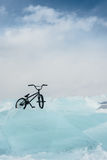 Girl on a bmx on ice. Stock Images