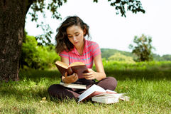 The girl with books sitting on a grass Stock Photography