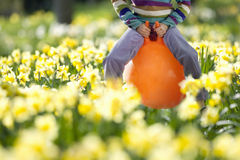 Girl bouncing on hoppity horse in daffodil field Royalty Free Stock Photo