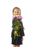 Girl with a bouquet Stock Images