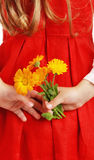 The girl with a bouquet of colors in a hand Stock Image