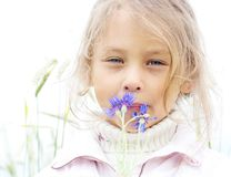 Girl with bouquet of cornflowers. Little cute girl with a bouquet of cornflowers Stock Photography