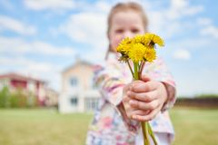 Girl with Bouquet of Dandelions royalty free stock image