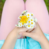 Girl with a bouquet in the hands Royalty Free Stock Photo