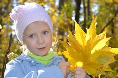 The girl with a bouquet of maple leaves in autumn park Royalty Free Stock Image