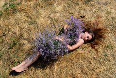 The girl with a bouquet of wild flowers Royalty Free Stock Photography