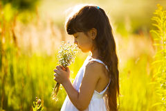 Girl with a bouquet of wildflowers Stock Image