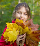 girl with a bouquet of yellow maple leaves Stock Photo