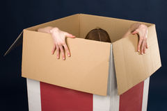 Girl in box. Young red-haired woman posing in cardboard box Stock Photos