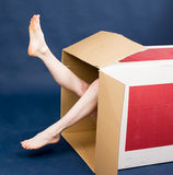 Girl in box Royalty Free Stock Image