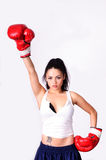 Girl Boxer Stock Image