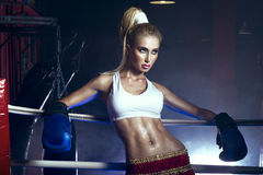 Girl boxer in boxing ring Stock Photos