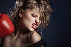 Girl boxer Stock Photography