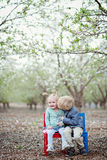 Girl, boy and almond blossom Royalty Free Stock Images
