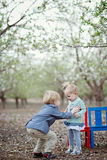 Girl, boy and almond blossom Stock Image